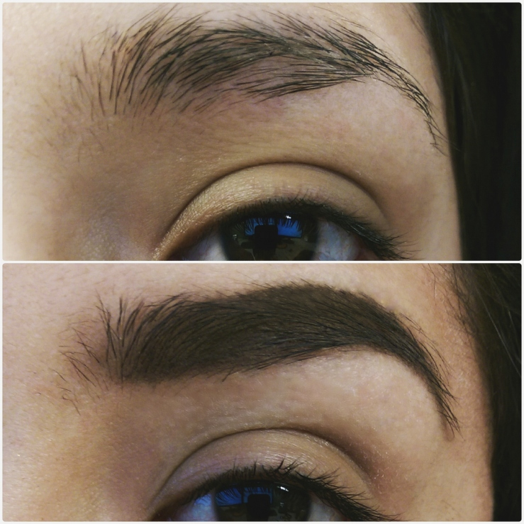 Brows Before and After Anastasia Beverly Hilla ABH Anastasia Brows brows on fleek dipbrow