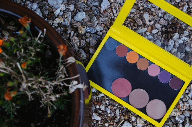 New Makeup Makeup Geek Blushes Makeup Geek shadows Makeup Geek foiled shadow zPalette Yellow zPalette plants makeup photography phoenix mua